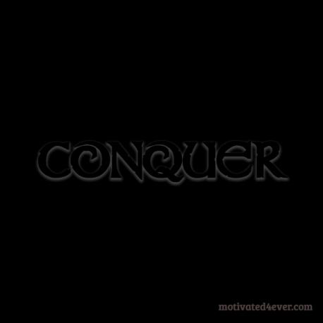 conquer-bb copy