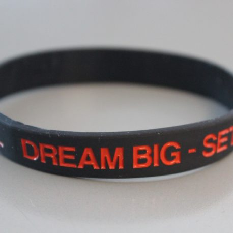 dream big set goals take action be successful