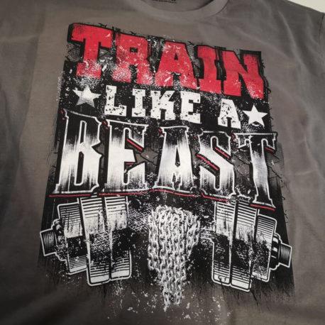 TRAIN LIKE A BEAST (2)